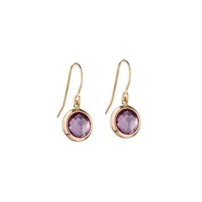 Earrings 9ct Yellow Gold Earrings with Purple Amethyst