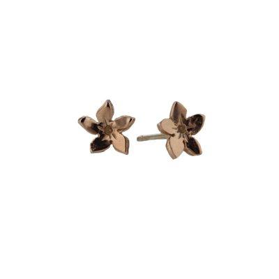 Burren Collection 9ct. Rose Gold Gentian Burren Flower Earrings